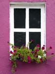 A Blind Window