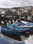 Blue Boats in the Harbour
