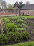 The Kitchen Gardens