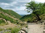 Looking Down Carding Mill Valley