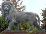 Lion -  Royal Castle of Laken
