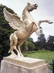 Winged Horse Statue in the Italianate Garden