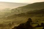 Rosedale, Early Morning