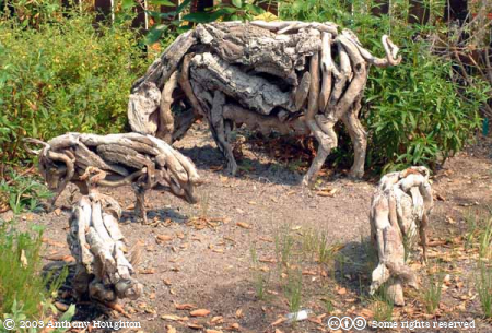 Eden Project,Cork,Pigs,Heather Jansch,Sculpture,Statue