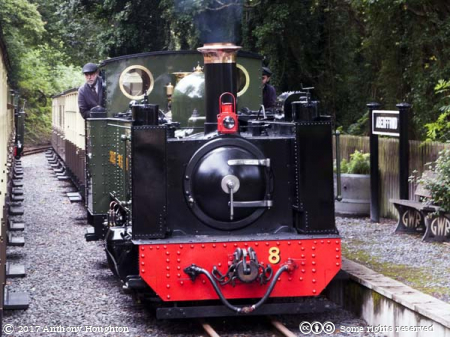 No8,Llwelyn,Aberffrwd Station,Vale of Rheidol Railway
