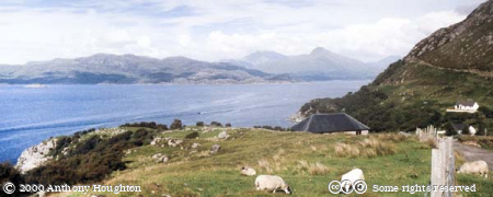 Mallaig Bheag,Mountains,Sea,Animal,Sheep
